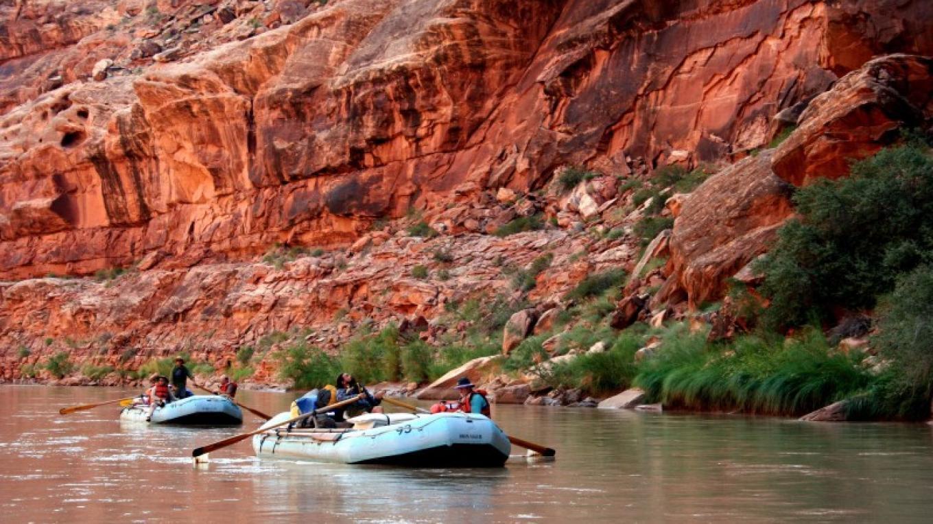 Floating deep in the San Juan River canyon with Wild Rivers. – Wild Rivers Expeditions