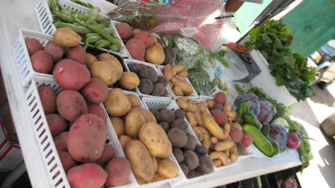 Fresh, organic, locally grown veggies are a staple at the Saturday Market – M. Diane Bairstow