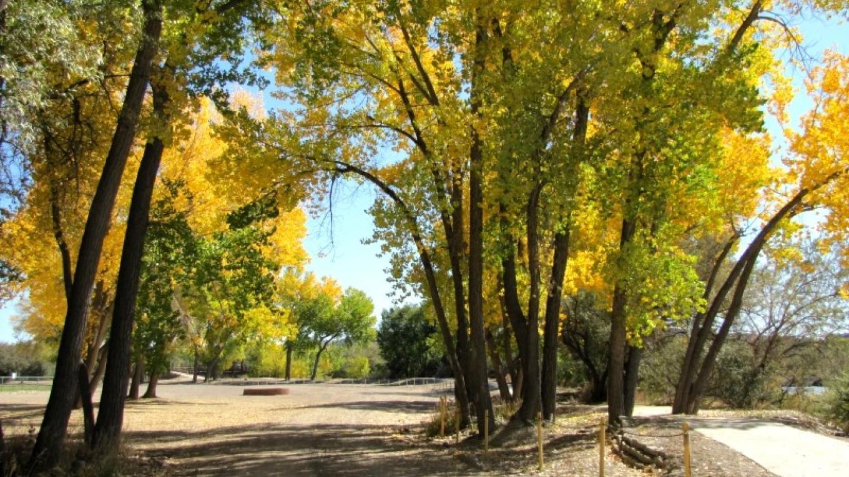 Riverside Park – Edward M. Kotyk