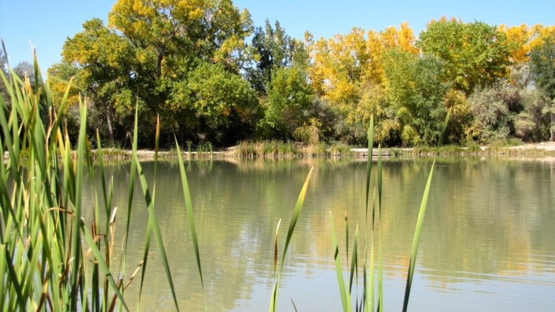 Riverside Park Fishing Pond – Edward M. Kotyk