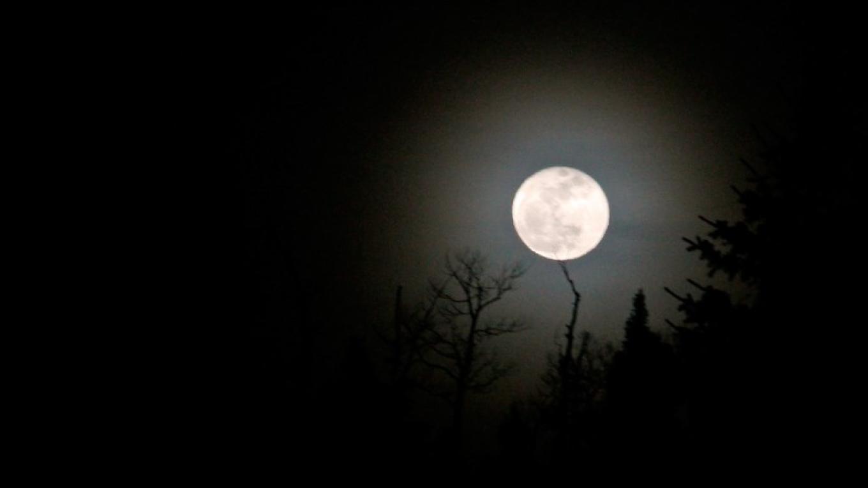 Moonlight ski night – Ellen Miller-Goins