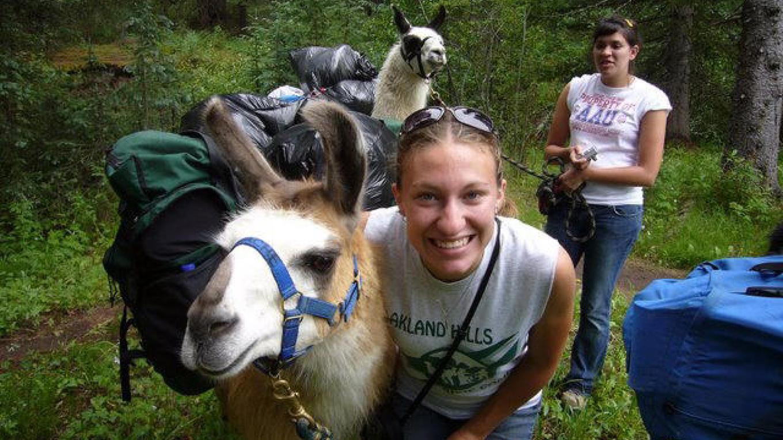 Llaughing with a llama – SWO,LLC