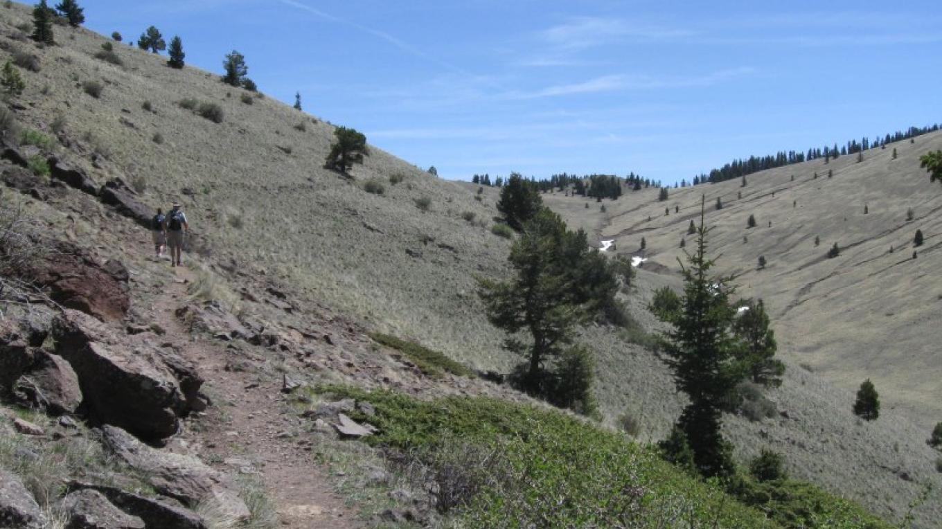 Above Rinconada Canyon on Trail 77. – SO