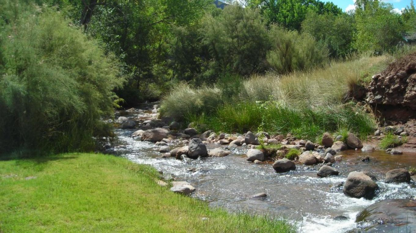 The Jemez River near the hot spring pool. – Therese Councilor