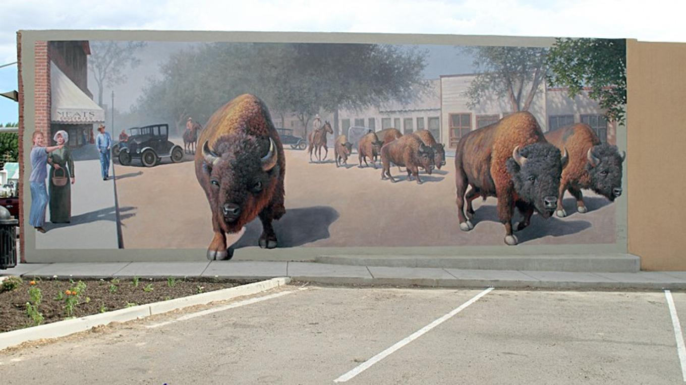 Buffalo Mural painted by John Cogan. The Museum Association funded the production of the mural. It can be found on the north facing wall of Aztec Hardware on Main Ave. – Dale W Anderson