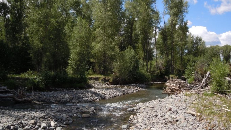 Rio Blanco – Southwest Wilderness Experience, LLC