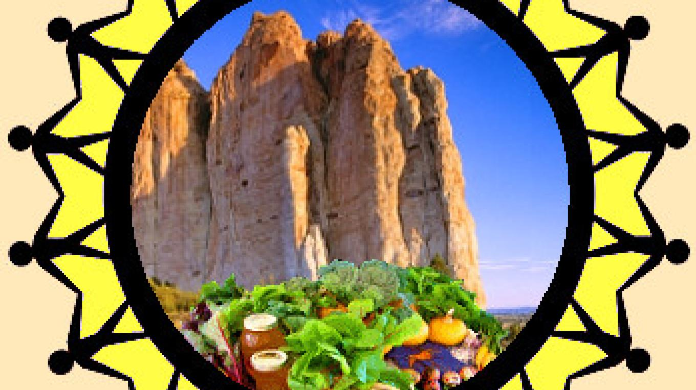 Food Oasis in the Desert.  The logo of the El Morro Valley Co-op. There is a real oasis pool at the base of El Morro Bluff that attracted peoples for 1000s of years to travel the Ancient Way through El Morro Valley – Kirk Shoemaker