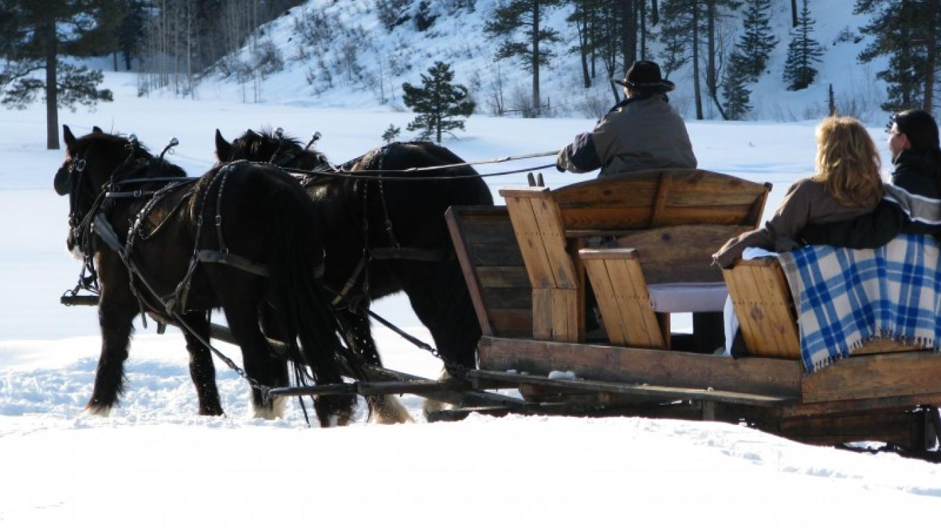 A snowy day on the trail. – Anne Rapp