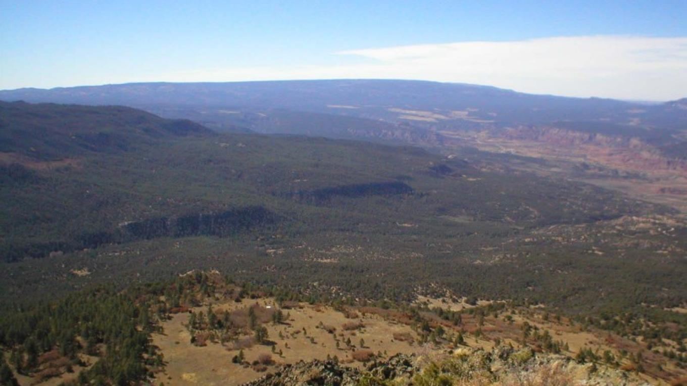 This photo was taken from Cerro Pedernál looking westward at the Sierra San Pedro, a vast area of forest with meadows. – Roberto Valdez