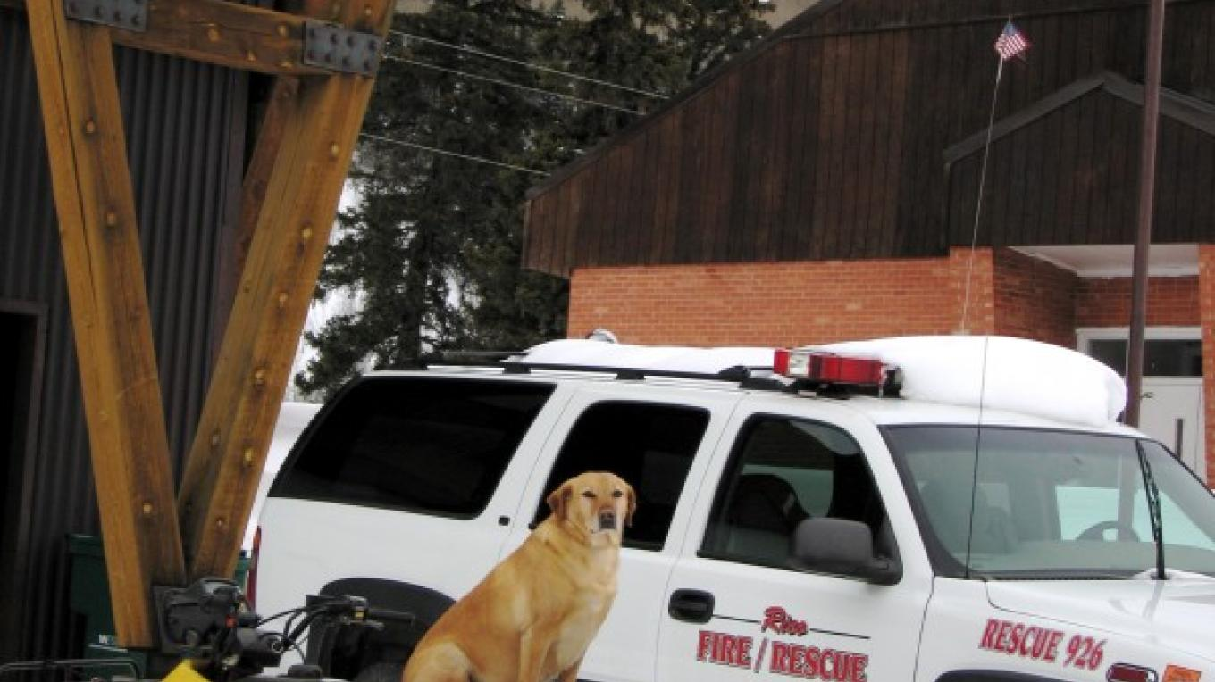 One of Rico's k-9 residents helps out at the Rico Fire House – Rebecca Levy