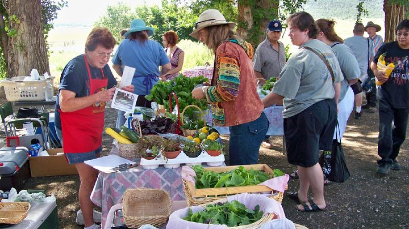 Mary volunteers at the Community Table, selling small quantities of produce for local gardeners – RFM