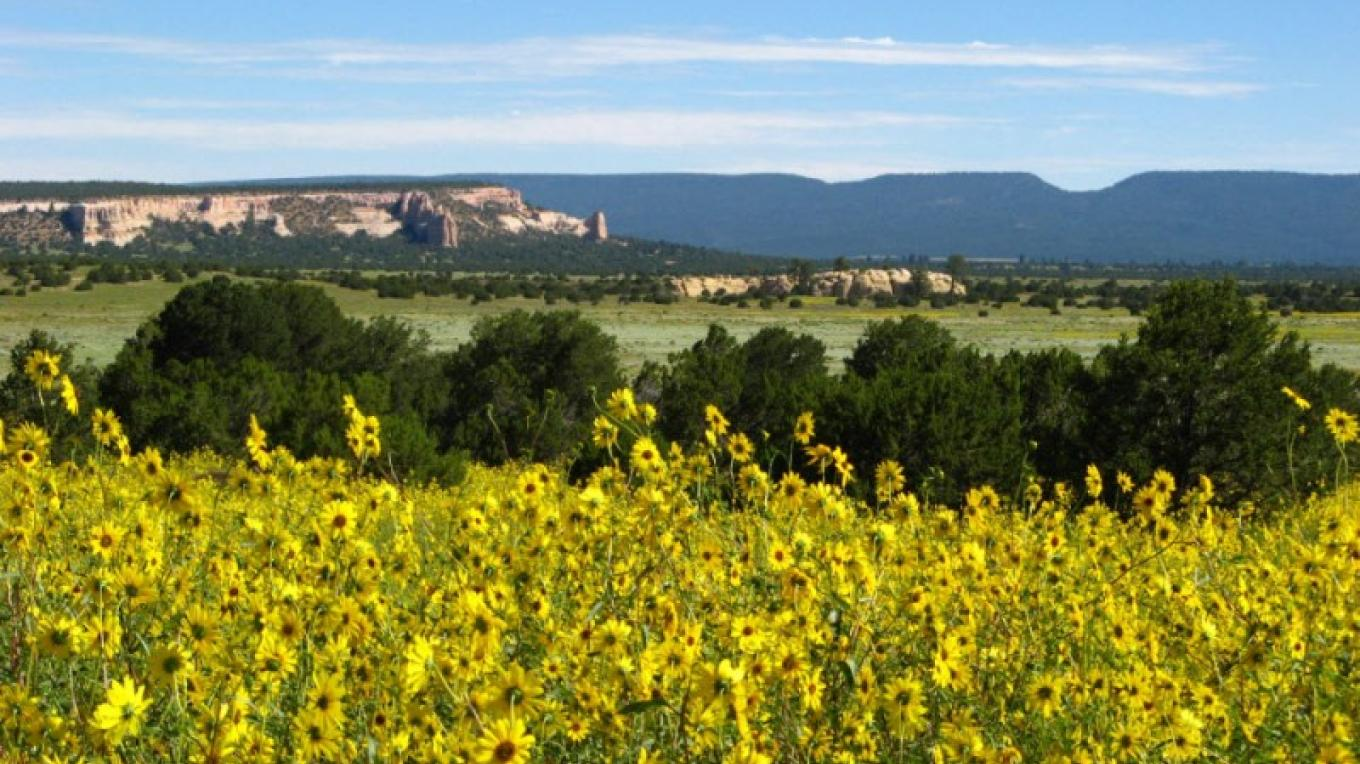 Breathtaking northern view of Zuni Mountains and Oso Ridge – Kirk Shoemaker