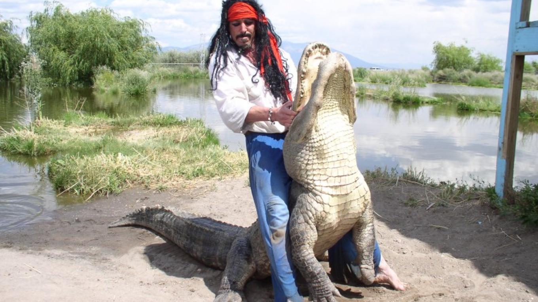 Gator wrestling at gatorfest – Paul Wertz
