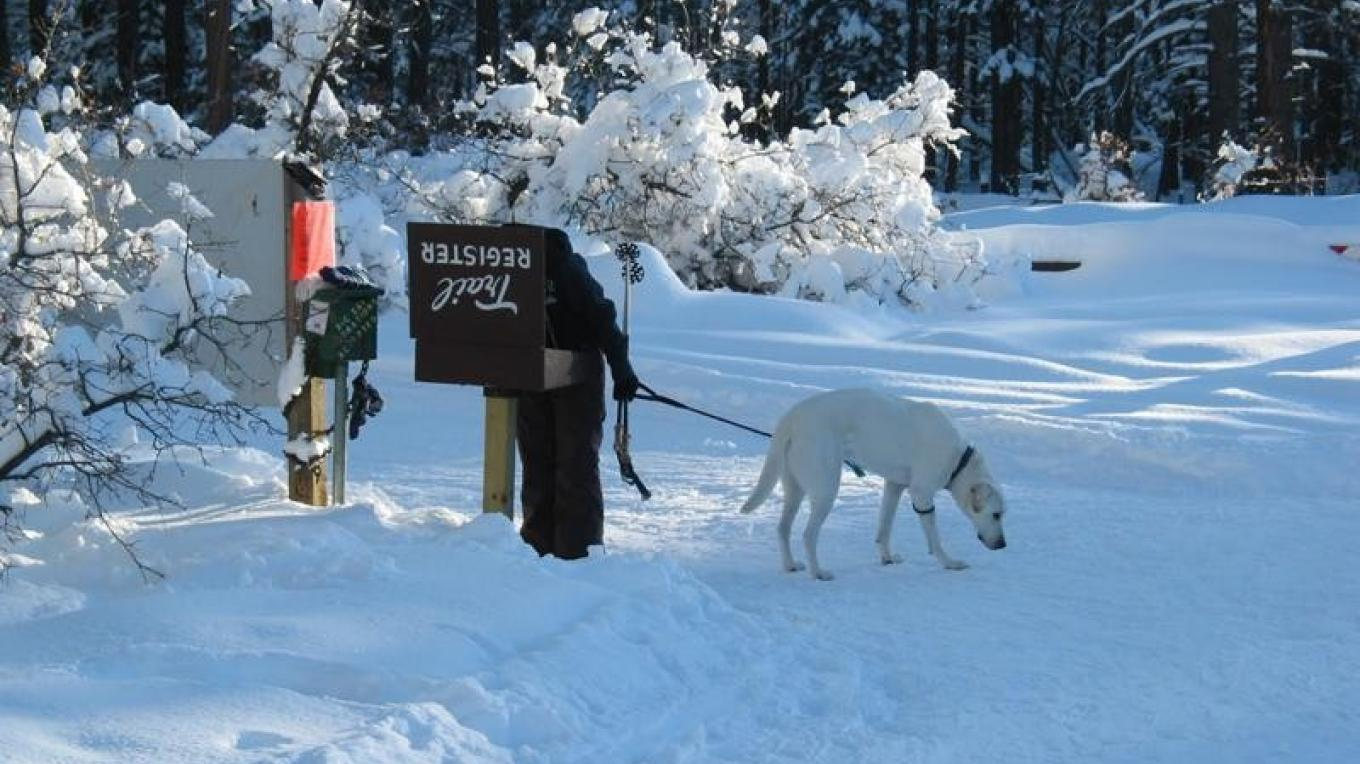 Pet are welcome at Chicken Creek Nordic – Nancy Marion