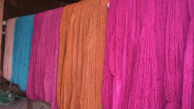 Colorful churro yarn drying after dye bath. – Alyce Elliott