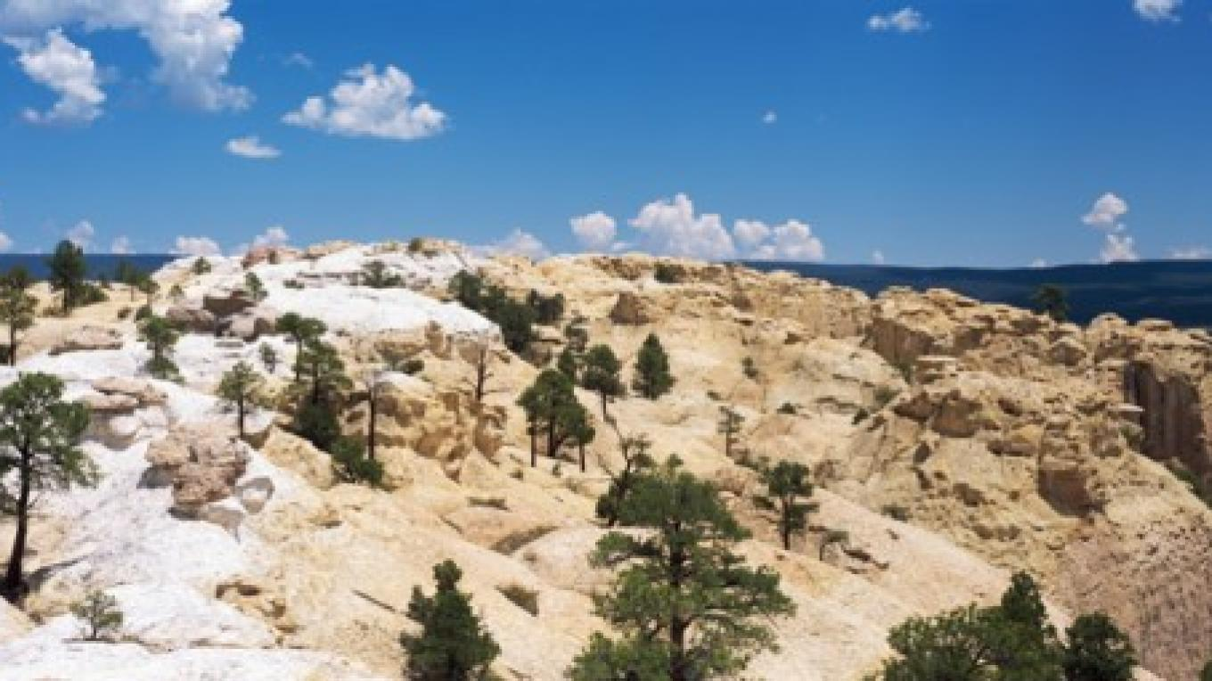 El Morro National Monument, NM – Terry Thompson