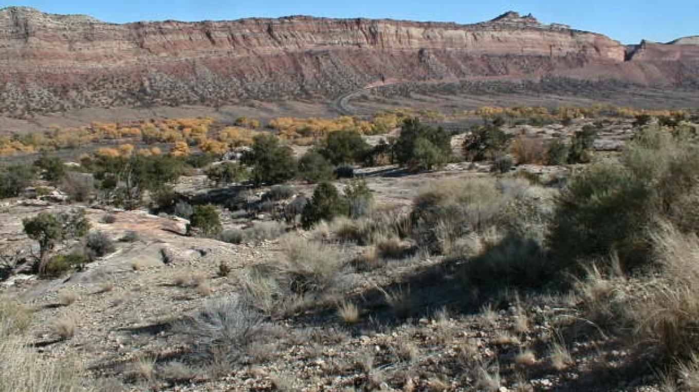 Comb Ridge from the west near Arch Canyon. – Coyotes Singing Studio