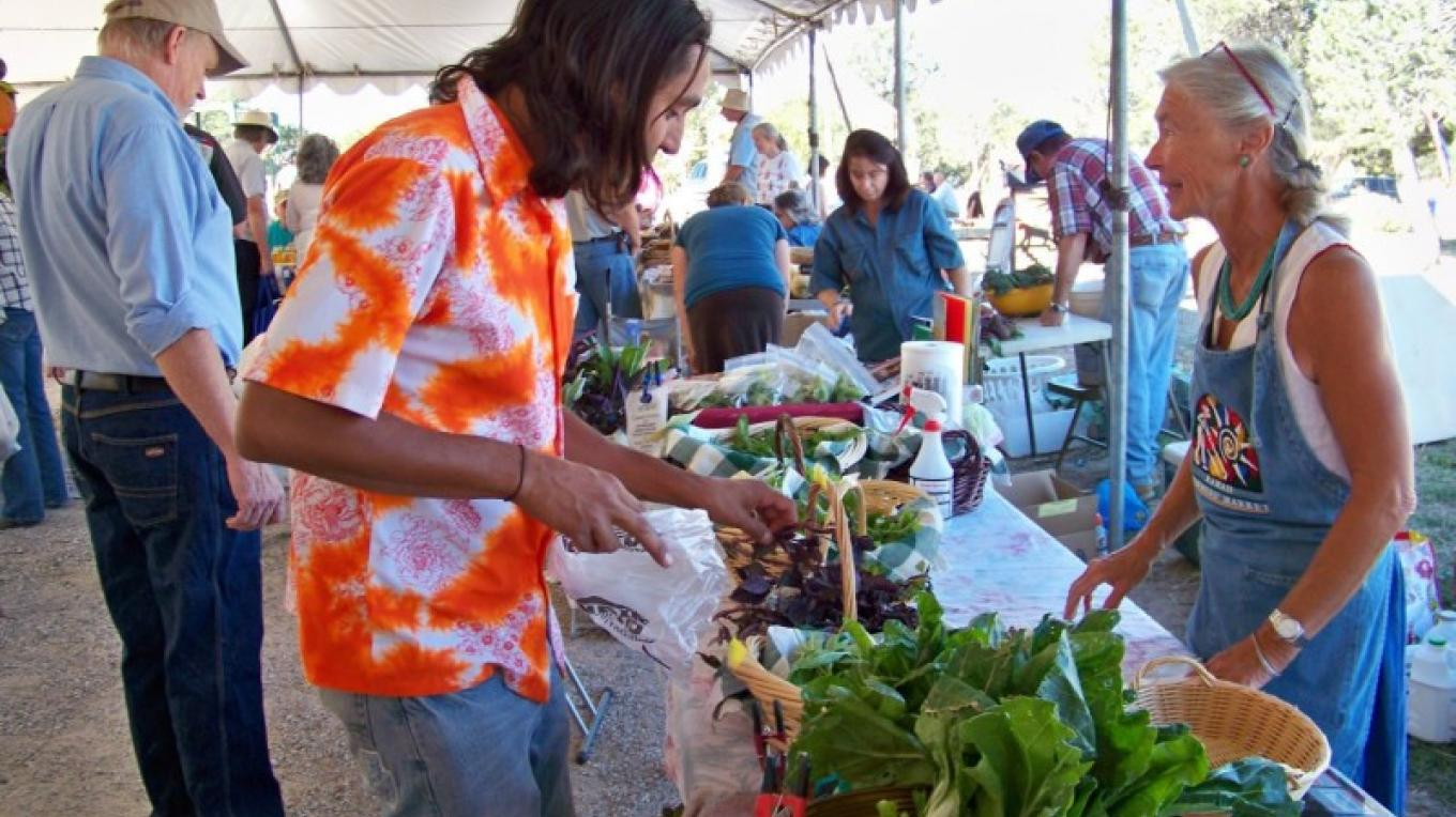 Rising Buffalo shops for fresh veggies at the community table, where a volunteer sells produce for local gardeners. – J. Rossignol