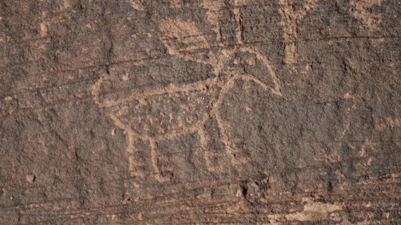Homol'ovi petroglyph – Ron Robinson,  AAS