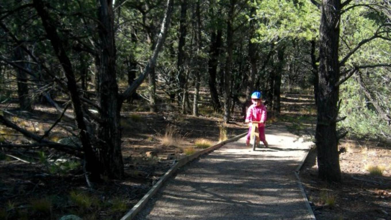 Pot Creek Universal Access Trail – Jim O'Donnell