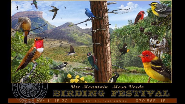 2011 Birding Festival Poster – Artist-Chris Vest