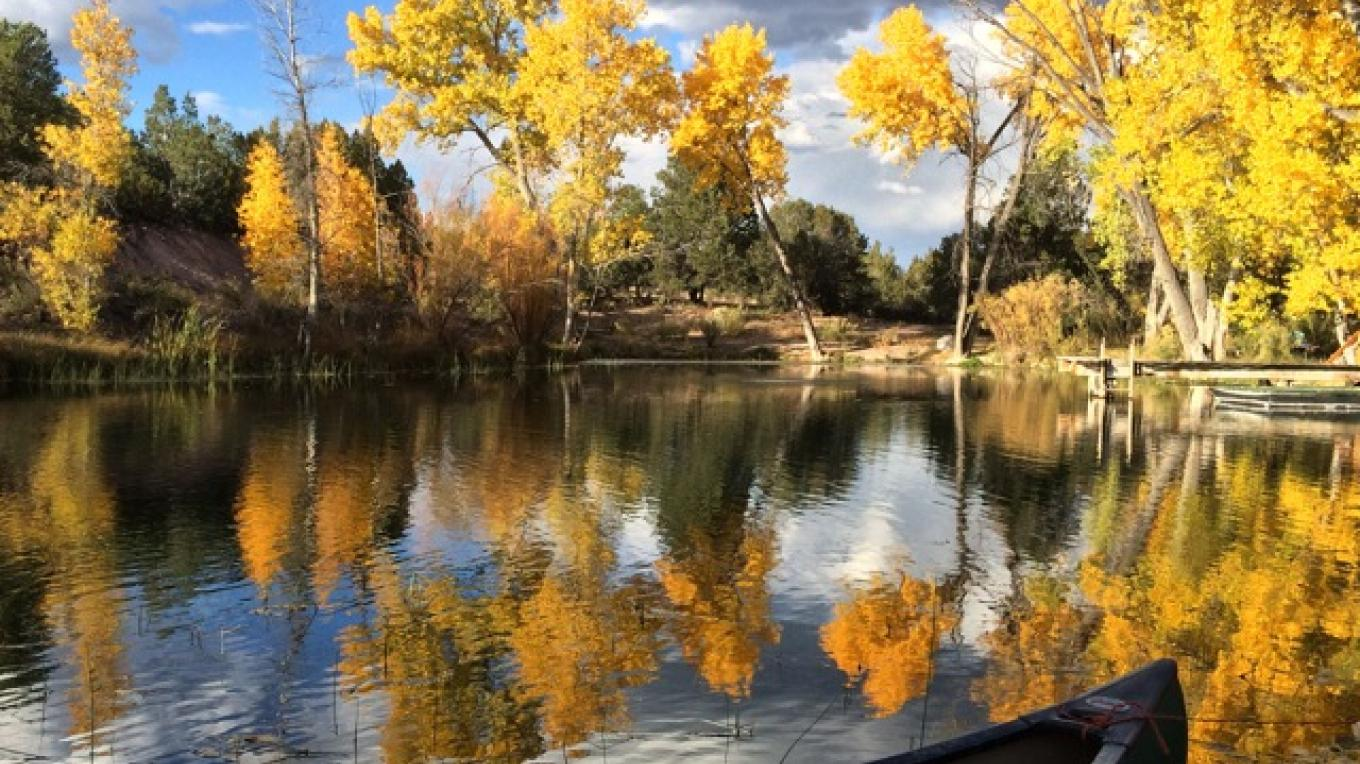 Our natural warm springs pond. – H. Atterbury