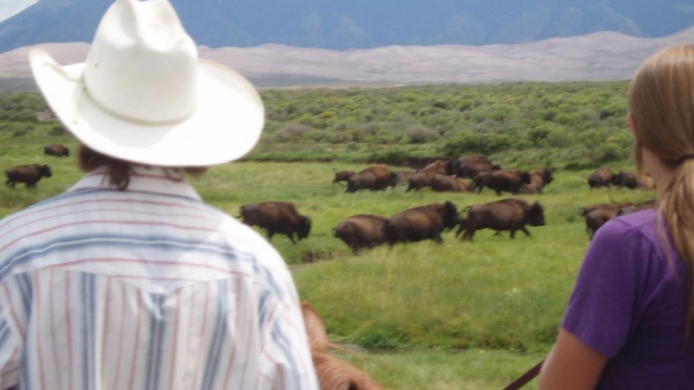 Riding among the Bison at Zapata Ranch.