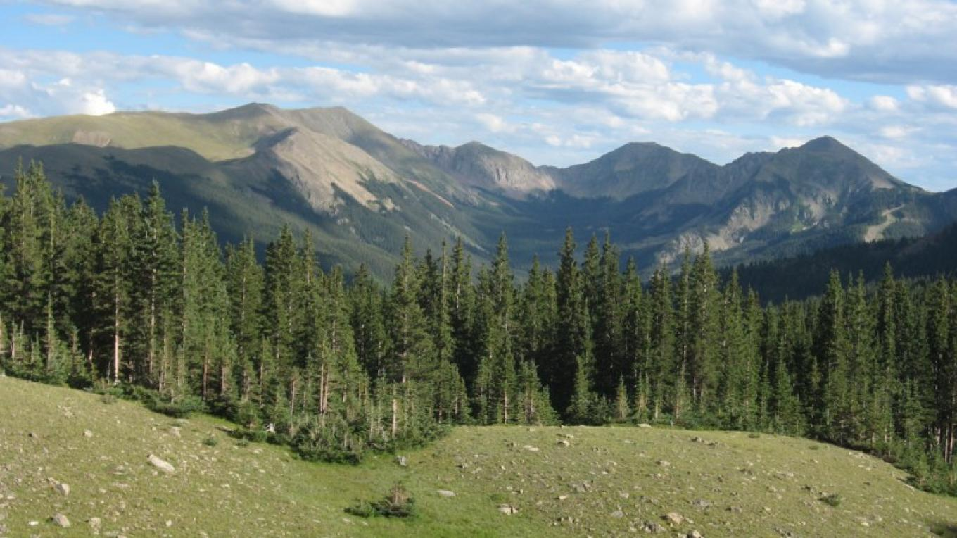 Wheeler Peak Range from the top of Long Canyon – Wild Earth