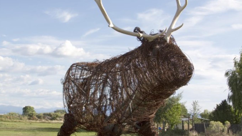 Wire Sculpture – Geraint Smith