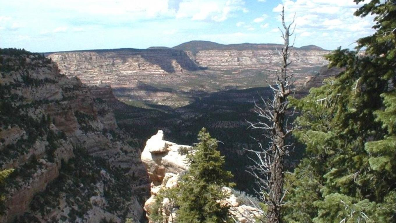 the upper reaches of Dark Canyon Wilderness.  Warren Canyon entrance to the Wilderness.  Most popular during the summer months - July, August, September. – San Juan County, Utah Visitor Services