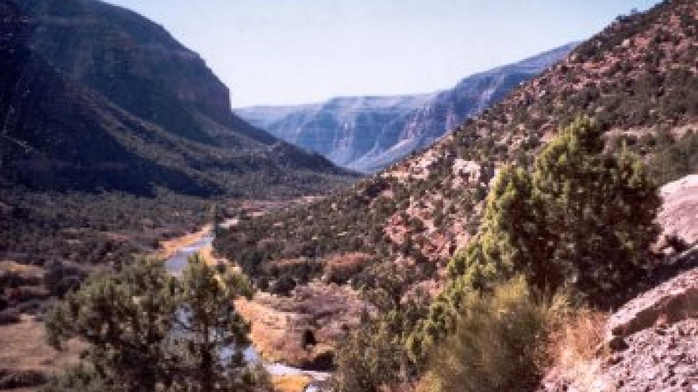 Dolores River Canyon in the fFall. – Courtesy of East Pines Ranch