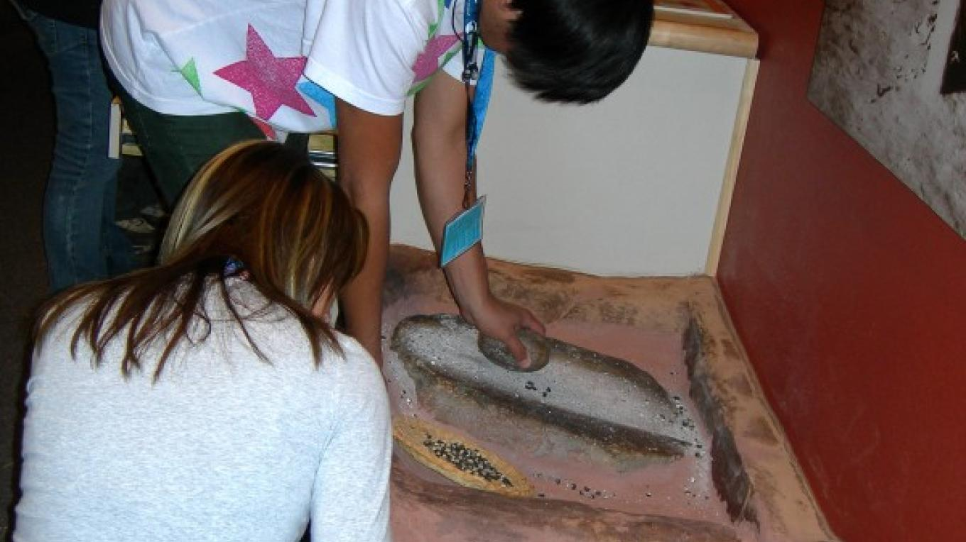 Students grinding corn with 1,000 year old manos and metates at the Anasazi Heritage Center's main gallery – Bureau of Land Management Anasazi Heritage Center