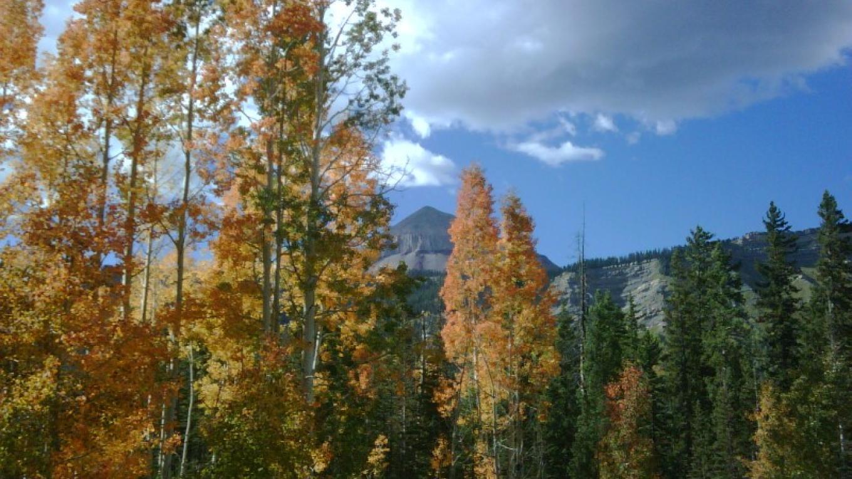 A fall trail ride. – Anne Rapp