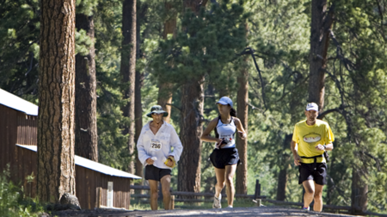 Marathon runners in an old growth Ponderosa Pine forest. – Pat McCormick