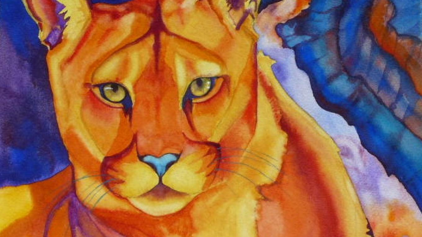 Canyon Lioness