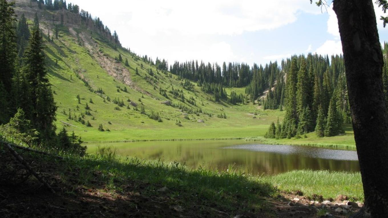 The Lake District – SWO, LLC