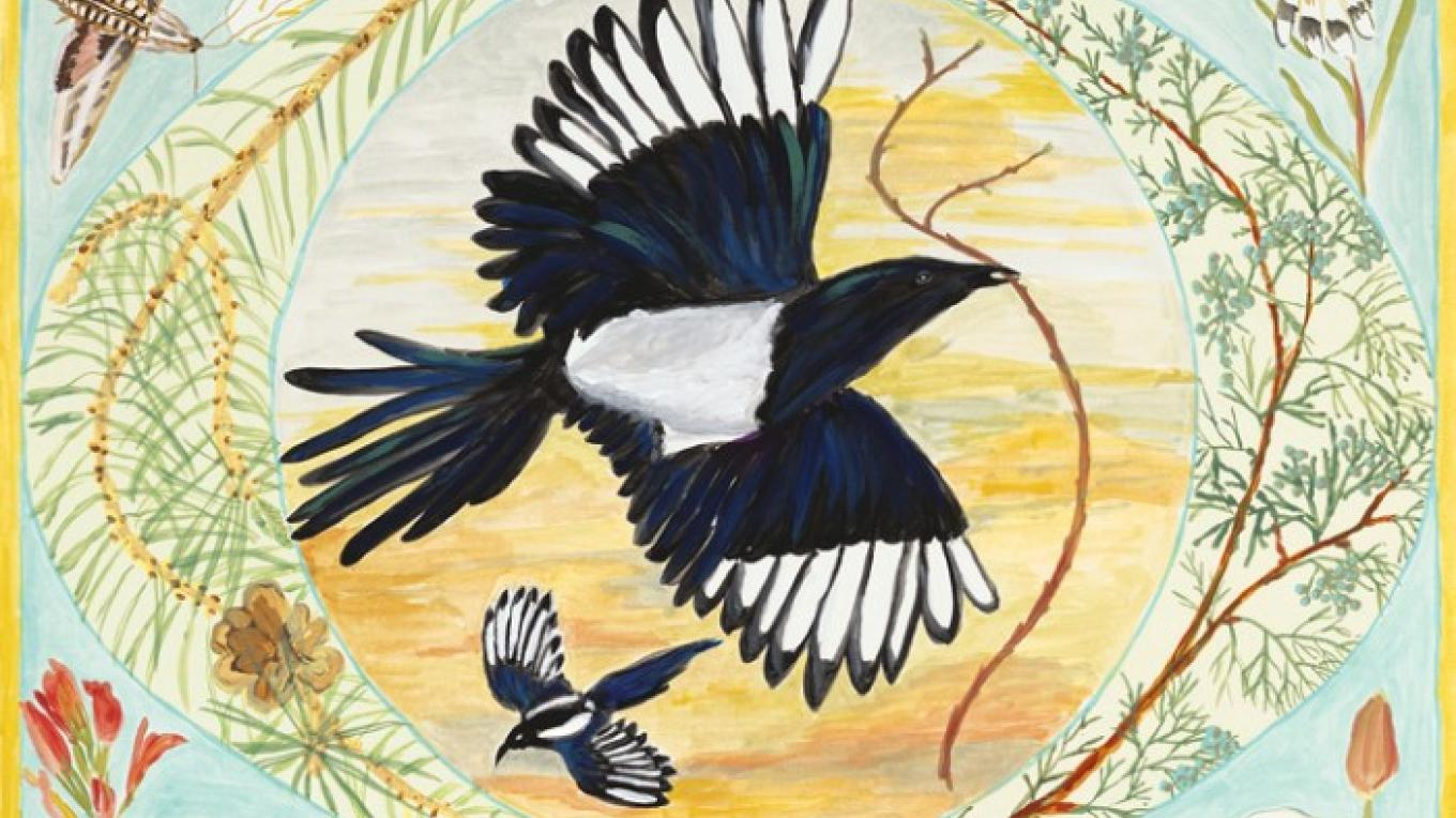 Magpie by Sally Wasowski