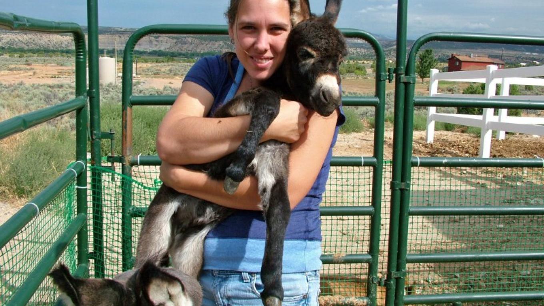 Mini donkey hugs at ASStec Acres – ASStec Acres