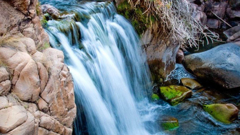 Loco Falls – Theodore Greer
