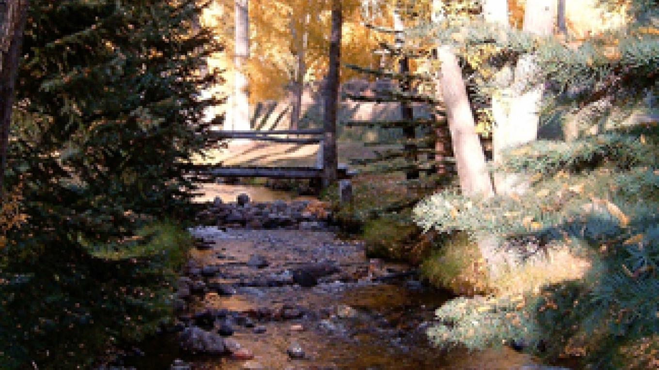 Crestone Creek flows from the campground in the Sangre de Cristos mountains above town and right through town. – Carmin