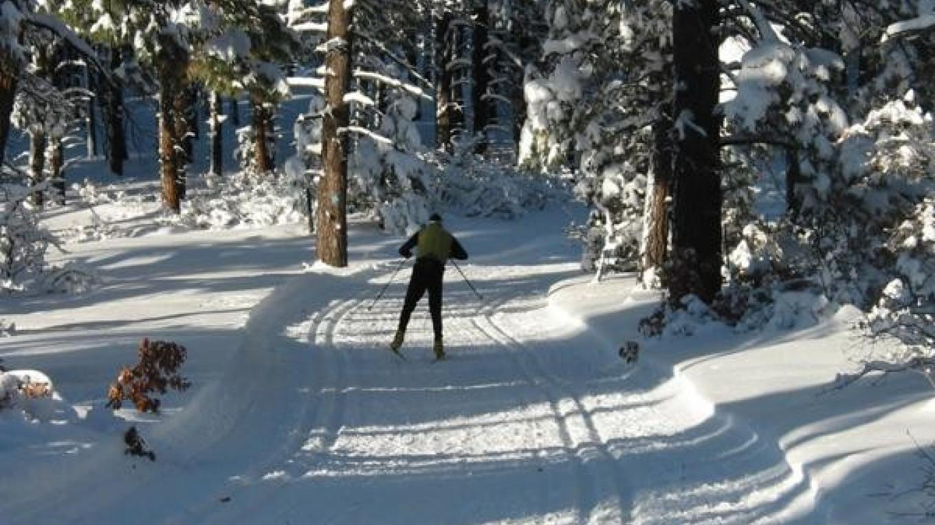 Lone skier at Chicken Creek Nordic – Nancy Marion