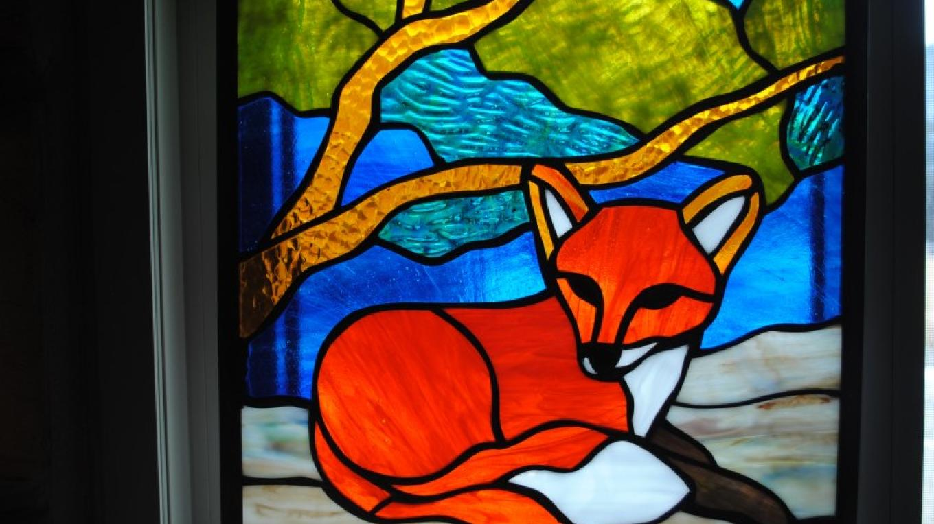 Red Fox window – Jolt