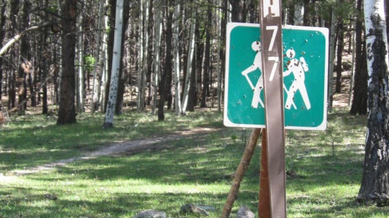 """""""Fairly clear"""" guidance - Trail 77. – SO"""