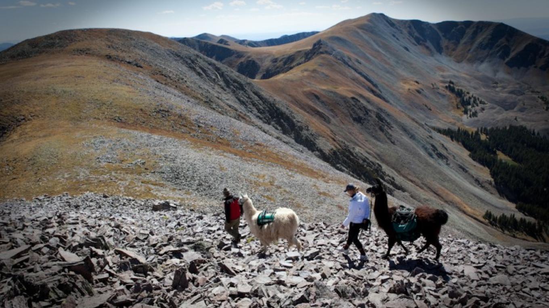 Climbing Latir Peak (12,708') – Ryan Heffernan