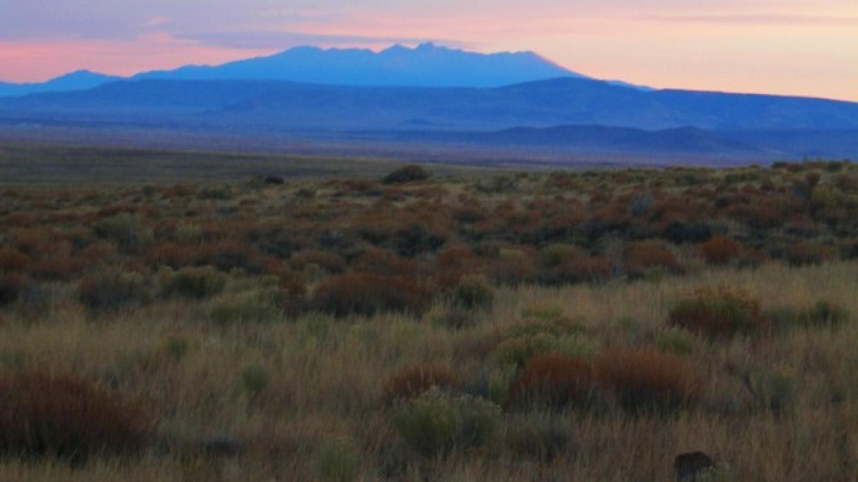Colorado across the grasslands of the RIo San Antonio WSA – Jim O'Donnell