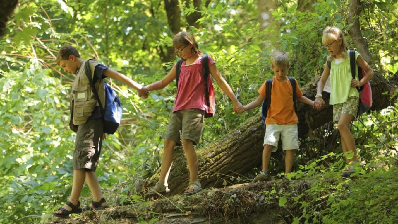 Eco Adventures Kids Programs