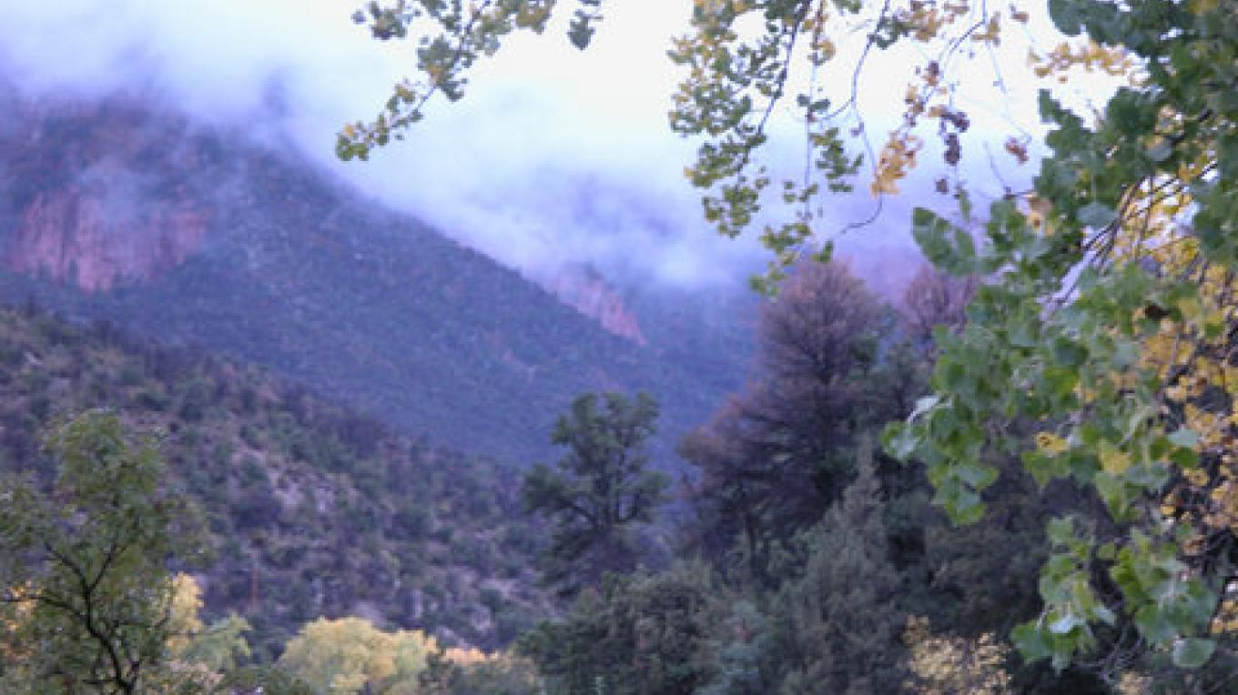 Looking north up the canyon