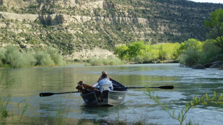 Fishing the San Juan River – Jeff McCall