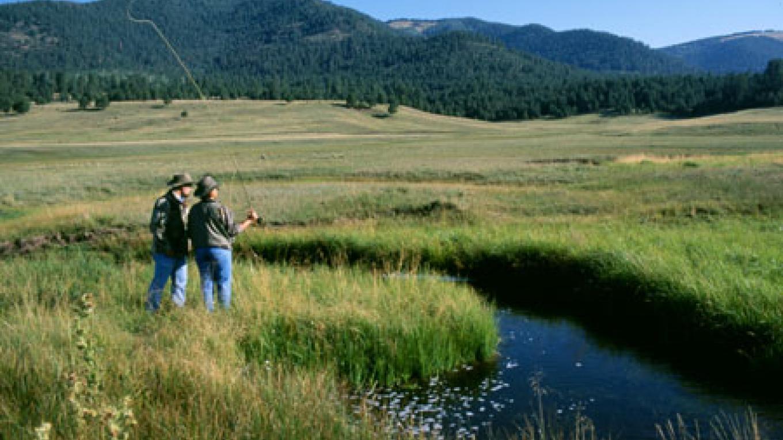 Fly fishing on the San Antonio Creek. – Don J. Usner