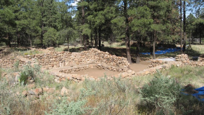 Elden Pueblo Community Room – Walter Gosart, NAAS